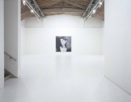 Rudolf Stingel-installation view