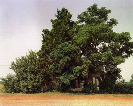 William Christenberry # 4