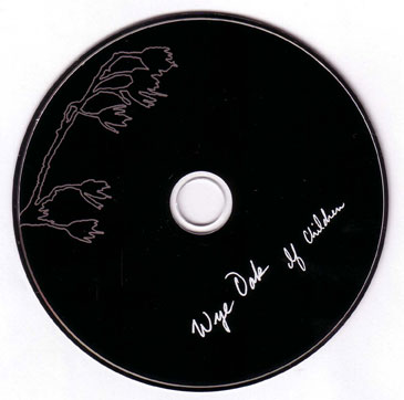 wye oak # 5 - CD itself